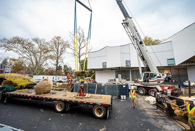 WVAC Tree letting 10-29-2019-33