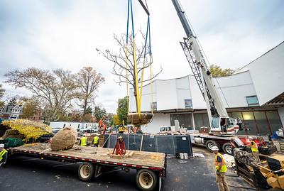 WVAC Tree letting 10-29-2019-30