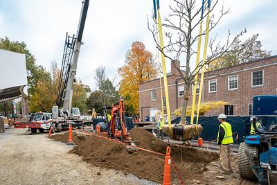 WVAC Tree letting 10-29-2019-48
