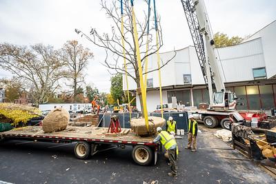 WVAC Tree letting 10-29-2019-27