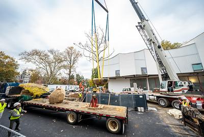 WVAC Tree letting 10-29-2019-31