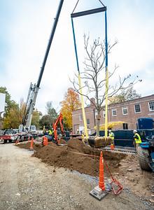 WVAC Tree letting 10-29-2019-40