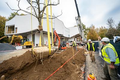 WVAC Tree letting 10-29-2019-37