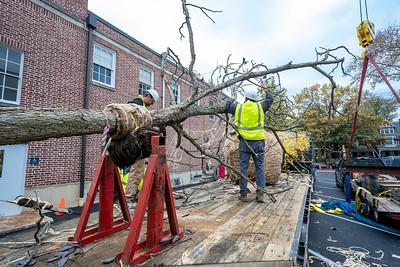 WVAC Tree letting 10-29-2019-16