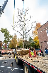 WVAC Tree letting 10-29-2019-21
