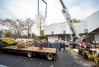 WVAC Tree letting 10-29-2019-32