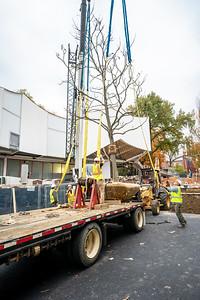 WVAC Tree letting 10-29-2019-25