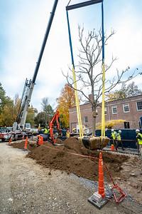 WVAC Tree letting 10-29-2019-38