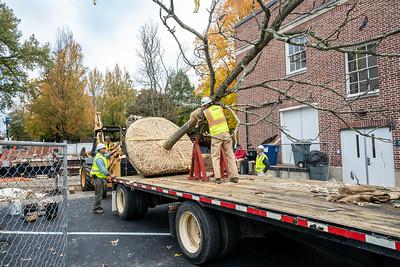 WVAC Tree letting 10-29-2019-19