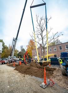 WVAC Tree letting 10-29-2019-39