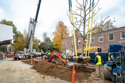 WVAC Tree letting 10-29-2019-47