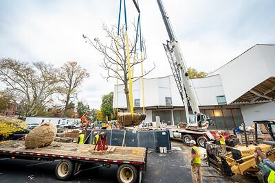 WVAC Tree letting 10-29-2019-28