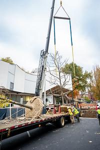 WVAC Tree letting 10-29-2019-22