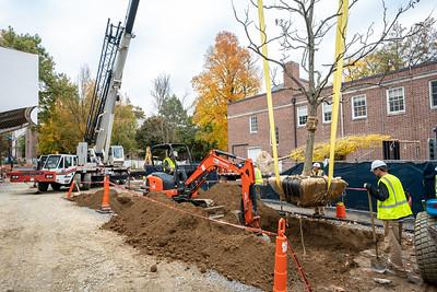 WVAC Tree letting 10-29-2019-44
