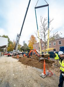 WVAC Tree letting 10-29-2019-43