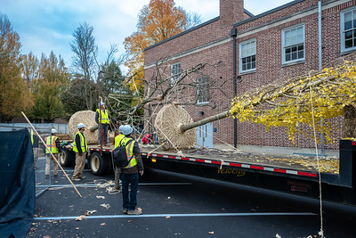 WVAC Tree letting 10-29-2019-11