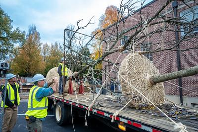 WVAC Tree letting 10-29-2019-12