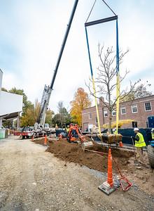 WVAC Tree letting 10-29-2019-42