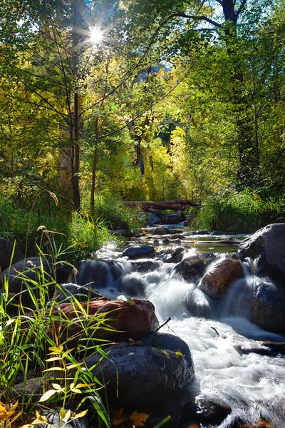 Arizona - Oak Creek Canyon