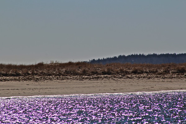 16.02.27 Popham Beach - Late Winter