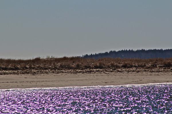 16.02.27 Popham Beach - Late Winter