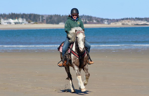18.03.31 Popham Beach - Horses, Dogs, Bicycles and a Golfer