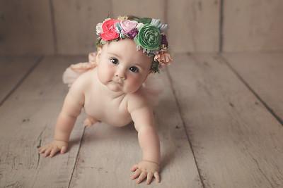 poppy 8 months