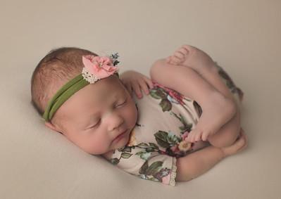 poppy lee newborn