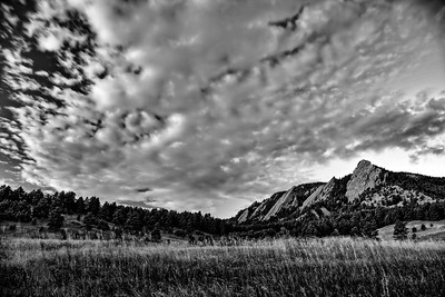 Chautauqua Meadow Sunrise #2 Black and White
