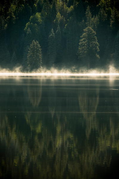 Dawn on the Mist