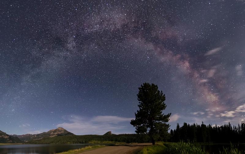 Williams Creek Milky Way