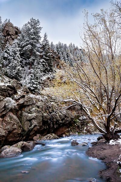 Spring Snow on Bear Creek