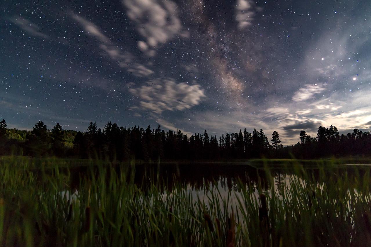 Night on the Pond