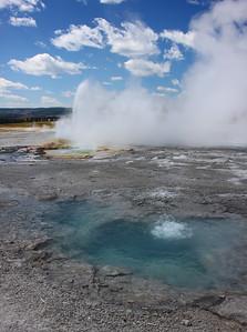Geyser, Yellowstone NP