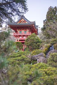 Japaese Pogoda in Golden Gate Park