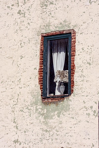 Old Wall and Window