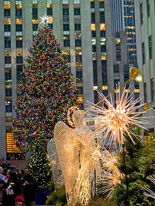 Rockefeller Center Christmas Tree 2007