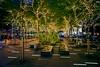 Holidays Zuccotti Park