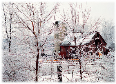 A Winter rural farm scene in New Jersey with the trees and barn covered in ice.