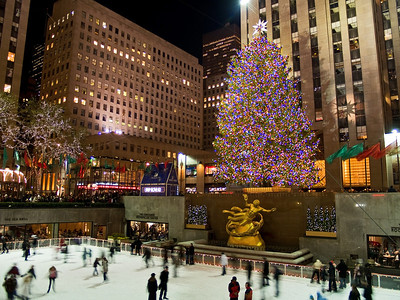 The Rockefeller Center Christmas Tree 2008