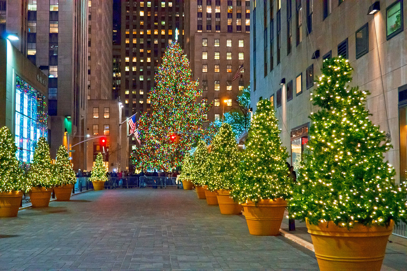 """""""Christmas Trees Rockefeller Center"""" NEW YORK - NOVEMBER 30: Holiday Decorations and the Christmas tree in Rockefeller Center on November 30, 2012 in  New York City."""