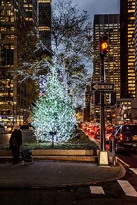 Park Ave Tree