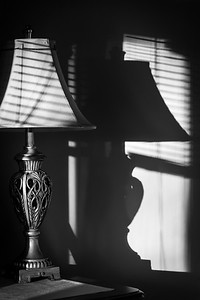 Lamp Shade and Light