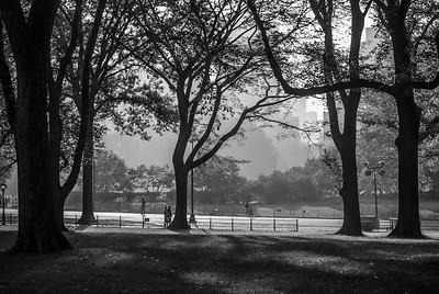 Central Park Silhouette
