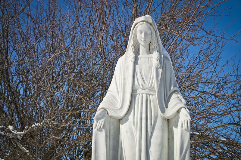"""""""The Blessed Mother""""<br /> A statue of The Blessed Mother with a bright blue sky and Winter tree branches."""