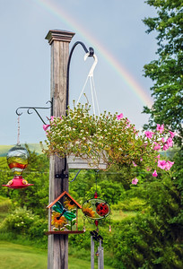 Plant Post and Rainbow