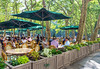 Outdoor Dining Bryant Park