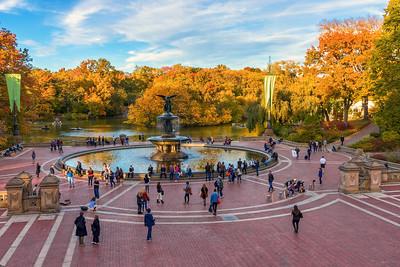 Bethesda Fountain View