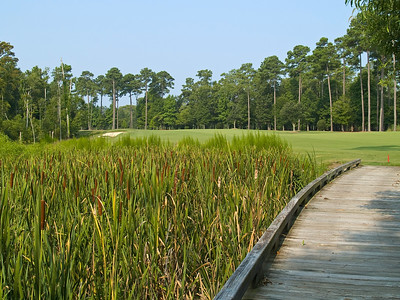 "A""Bridge on Course"" A wooden bridge through a wetland on the TPC Golf Course near Myrtle Beach, South Carolina."