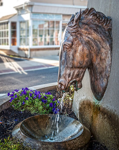 Antique Horse Fountain